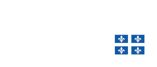 Centre de services scolaire Marguerite-Bourgeoys